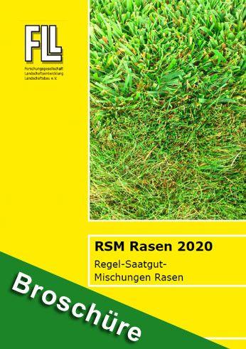 RSM 2020